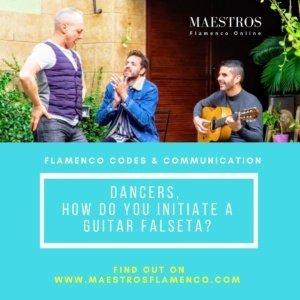 Maestros Flamenco Online