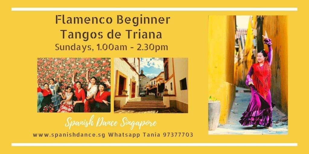 Spanish Dance Flamenco Singapore (5)